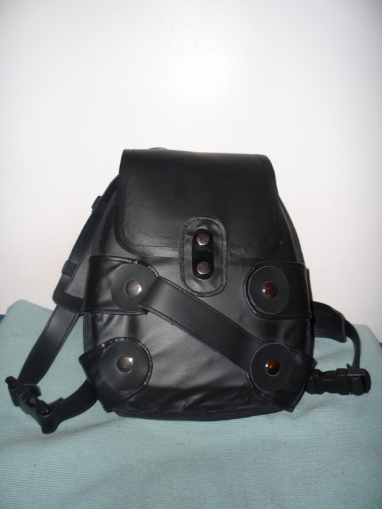 Tomb Raider Legend backpack